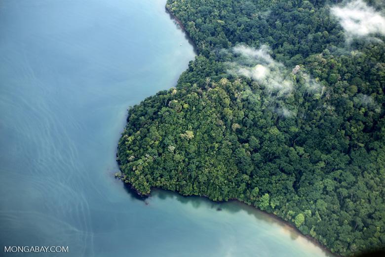 Aerial view of rain forest in Costa Rica [costa_rica_aerial_0373]