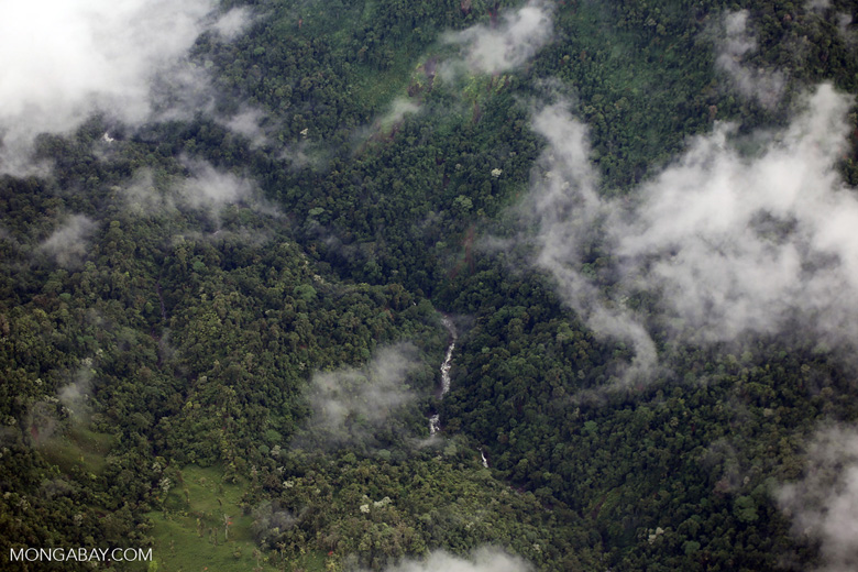 Aerial view of rain forest in Costa Rica [costa_rica_aerial_0441]