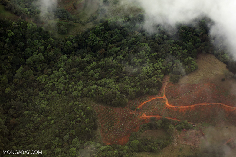 Deforestation in Costa Rica [costa_rica_aerial_0452]