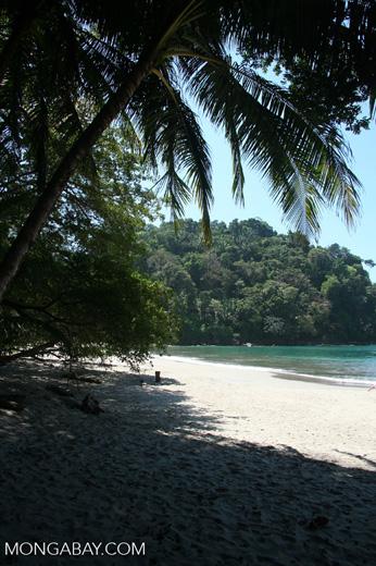 Beach at Manuel Antonio National Park [cr_4286]