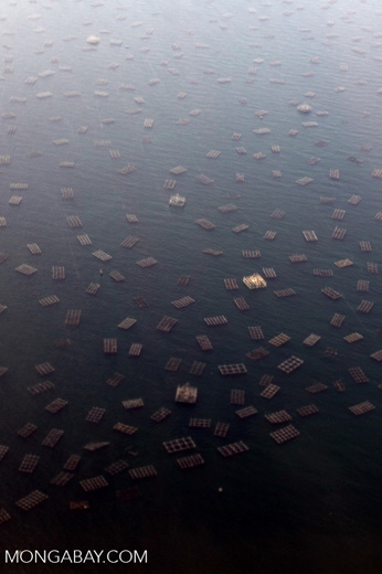Fish traps in the Jakarta Bay [java_0005]