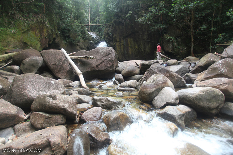 Riam Berasap waterfall in Gunung Palung National Park [kalbar_0767]