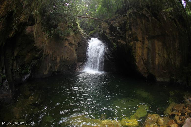 Riam Berasap waterfall in Gunung Palung National Park [kalbar_0782]