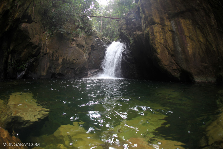 Riam Berasap waterfall in Gunung Palung National Park [kalbar_0820]