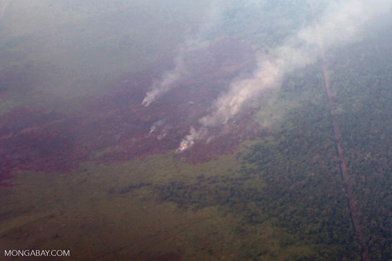 Aerial vew of burning peatlands in Indonesia's West Kalimantan province [kalbar_1200]