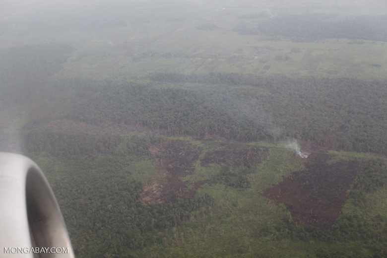 Aerial vew of burning peatlands and forest in Indonesian Borneo [kalbar_1246]