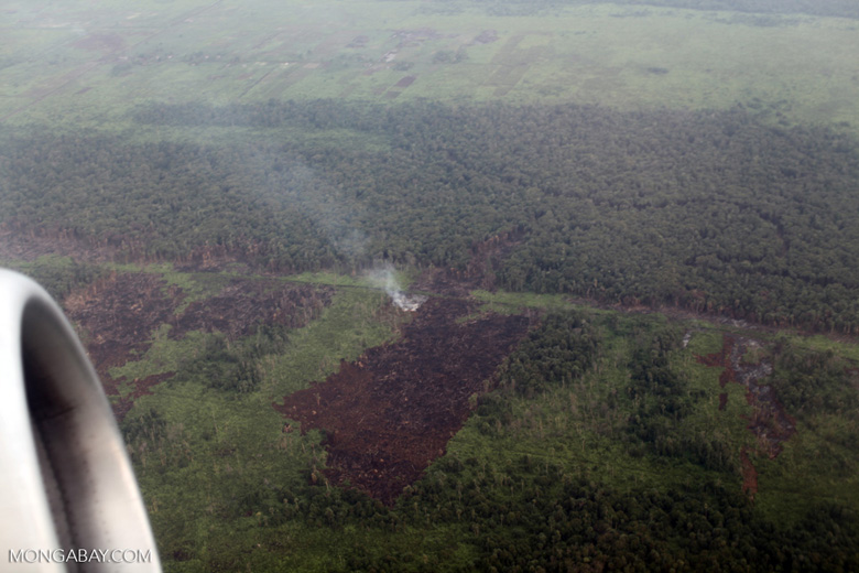 Airplane vew of burning peatlands and forest in Indonesian Borneo [kalbar_1238]