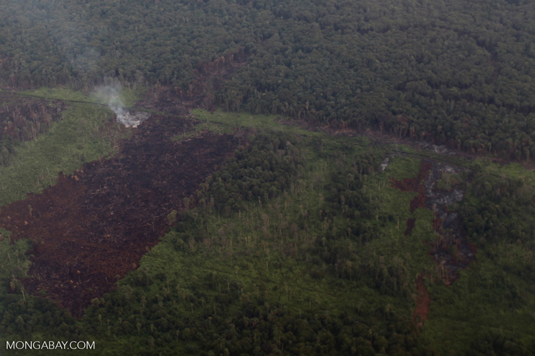 Airplane vew of burning peatlands and forest in Indonesian Borneo [kalbar_1247]