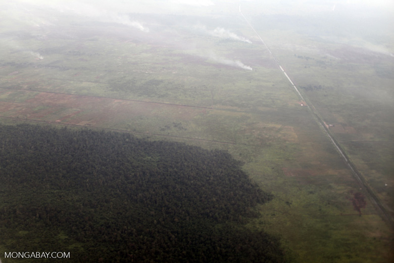 Airplane vew of burning peatlands and forest in Indonesian Borneo [kalbar_1257]