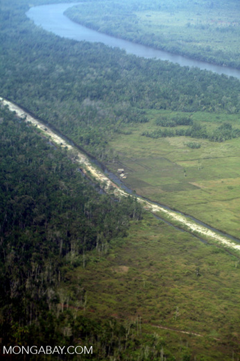 Aerial view of deforestation and forest degradation in Kalimantan [kalbar_2321]