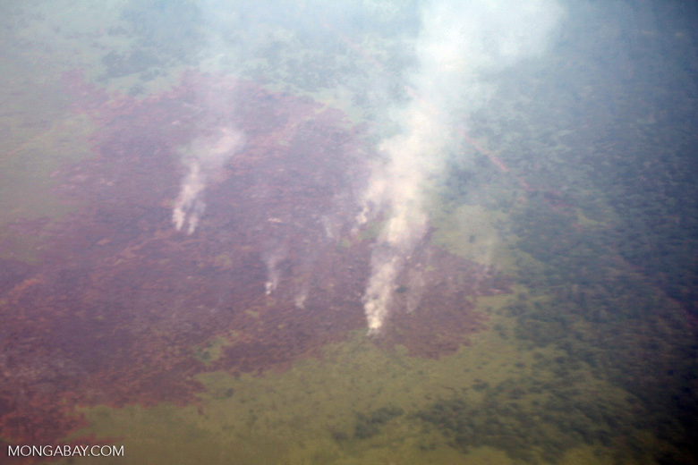Aerial view of peat fires in Borneo [kalbar_2334]