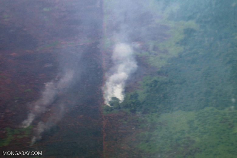 Aerial view of peat fires in Borneo [kalbar_2340]