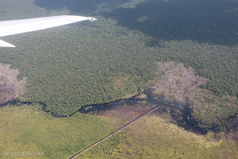 Aerial view of peat forest logging in Central Kalimantan