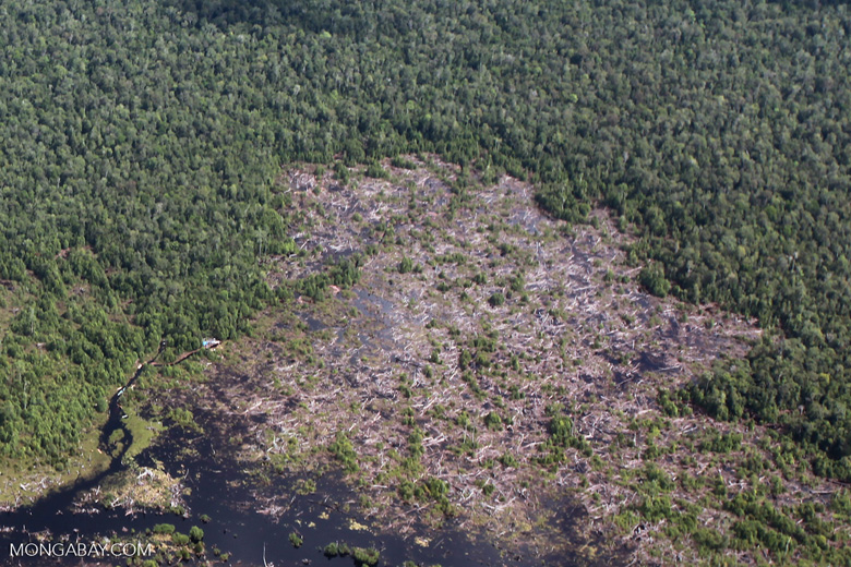 Aerial view of peatland being drained and cleared in Central Kalimantan [kalimantan_0032]