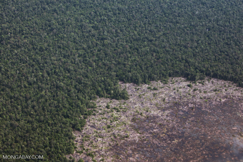 Aerial view of peatland destruction in Borneo [kalimantan_0043]