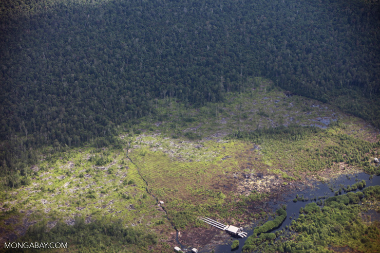 Aerial view of peatland destruction in Borneo [kalimantan_0049]