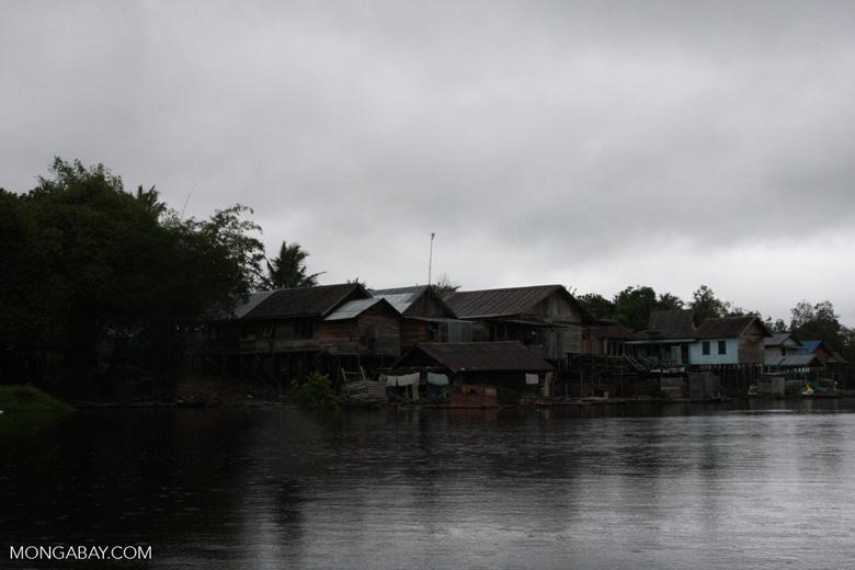 Raised houses in Nyaru Menteng [kalimantan_9020]