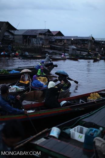Floating market in Banjarmasin [kalsel_0198]