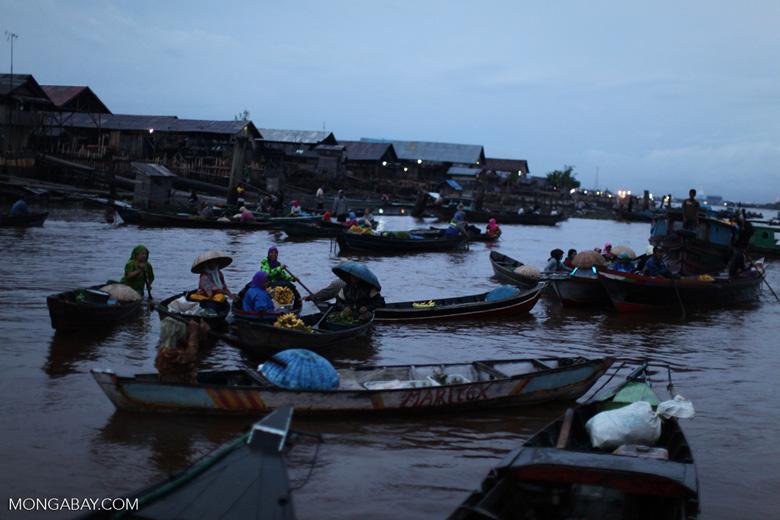 Floating market in Banjarmasin [kalsel_0202]