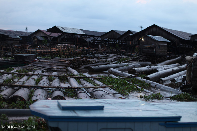 Timber from Central Kalimantan being sold at a market in Banjarmasin [kalsel_0229]