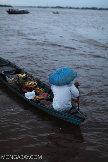 Floating market in Banjarmasin [kalsel_0232]