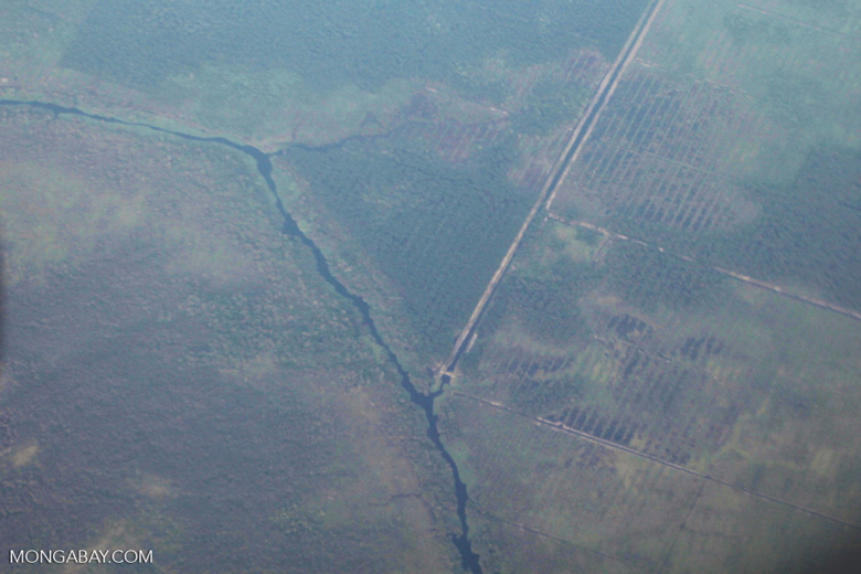 Deforestation and degradation as seen from an airplane in South Kalimantan [kalsel_0247]