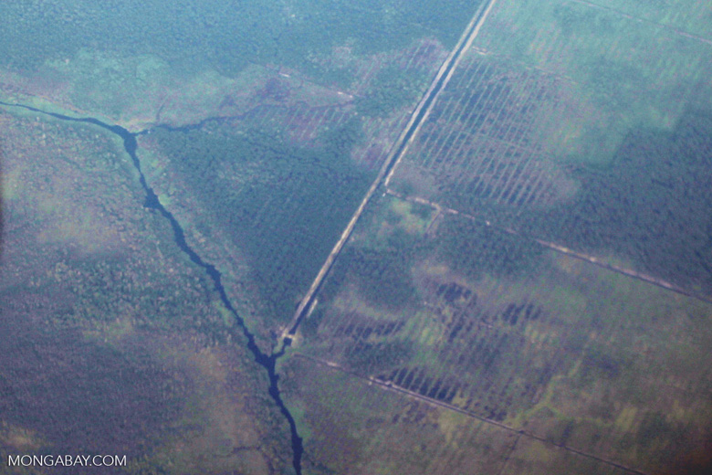 Deforestation and degradation as seen from an airplane in South Kalimantan