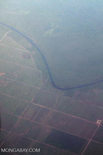 Plantations as seen from an airplane in South Kalimantan [kalsel_0254]