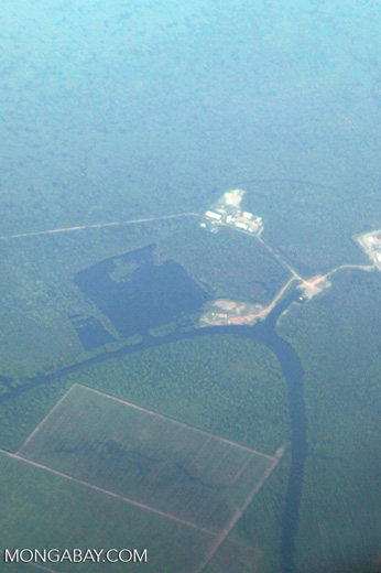 Plantations as seen from an airplane in South Kalimantan