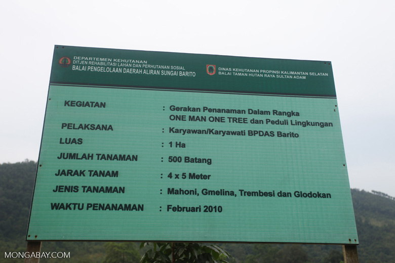 One Man One Tree reforestation project using Gmelia and Mahoni species [kalsel_0309]