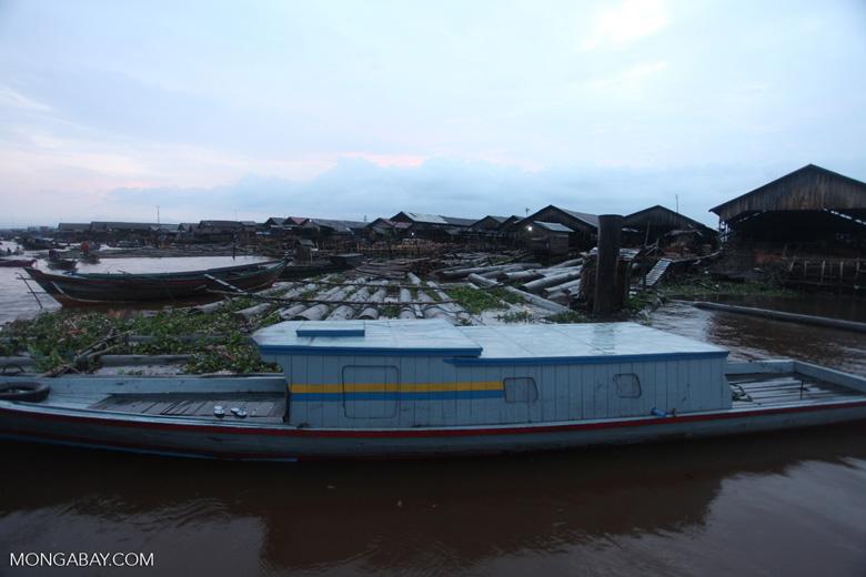 Timber market in Banjarmasin [kalsel_0322]