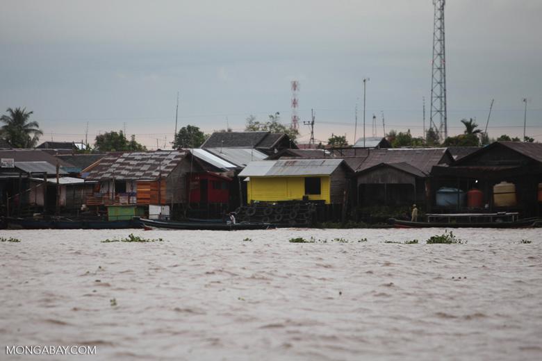 Houses along the Barito river in Banjarmasin [kalsel_0333]
