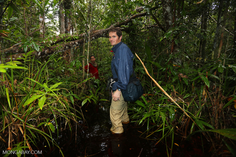Hiking in a peat swamp in Borneo