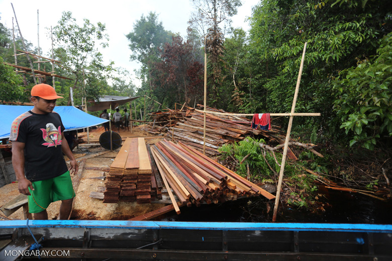Workers at an illegal sawmill in Borneo