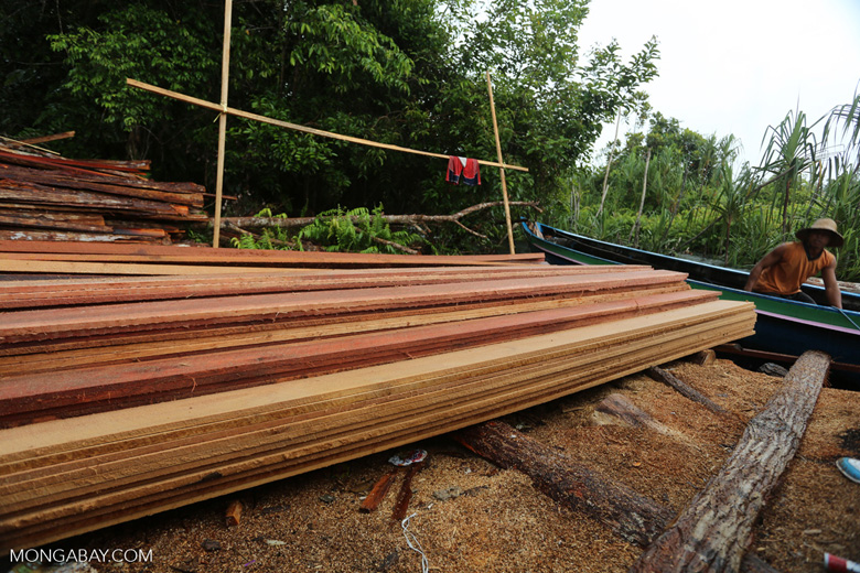 Stacks of illegally logged timber in Borneo [kalteng_0261]