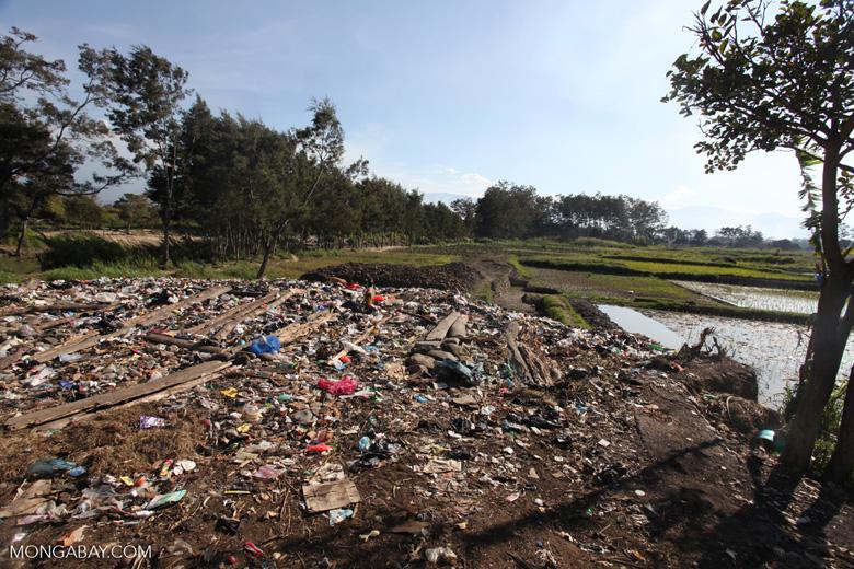 Trash in New Guinea