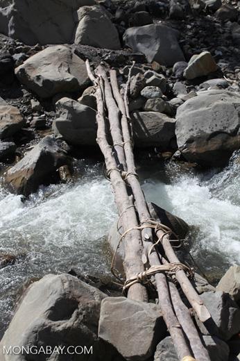 Bridge made of logs