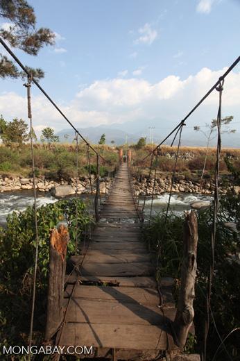 Hanging bridge' near Wamena