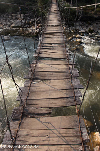 Rope bridge near Wamena
