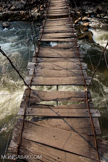 Rope bridge near Wamena