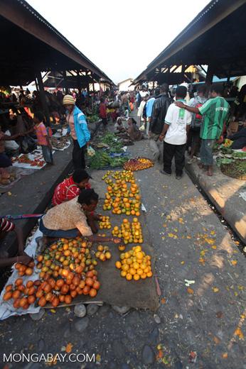 Oranges being sold in the Wamena market