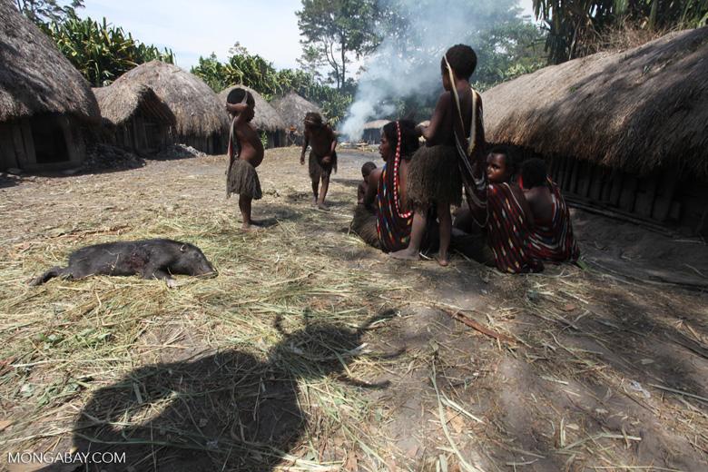Children in a Dani village