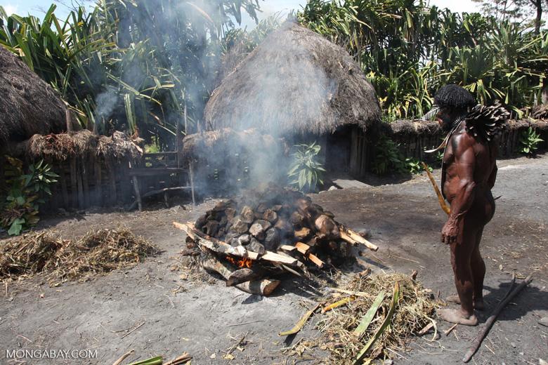 Dani man roasting pig