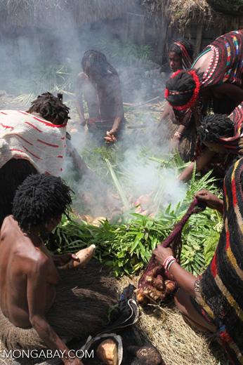 Tribal Dani women cooking sweet potato