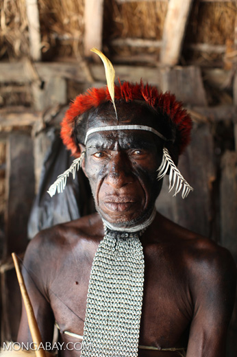 Dani man in traditional ceremonial dress