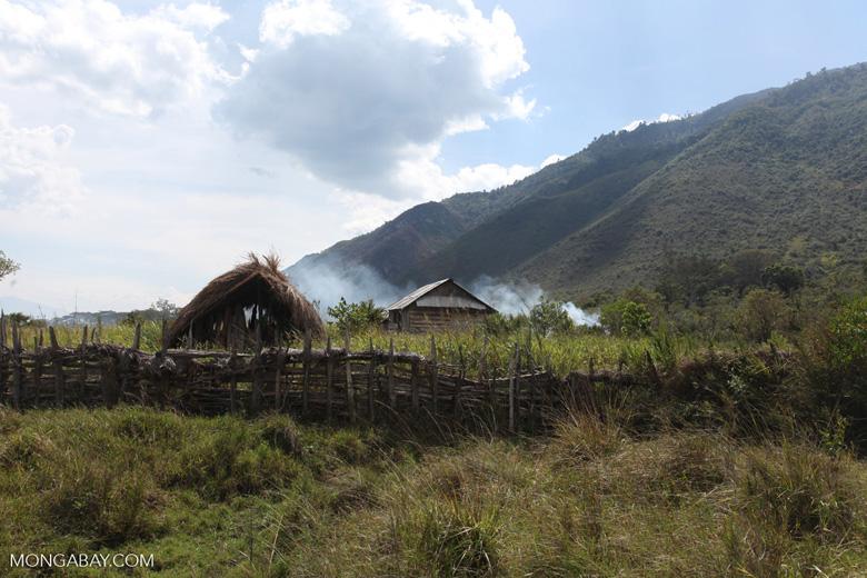 Smoke rising from a Dani village