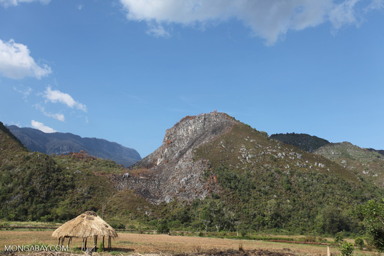Limestone mountains in New Guinea