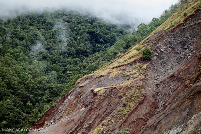 Landslide on a deforested hillside near Jayapura