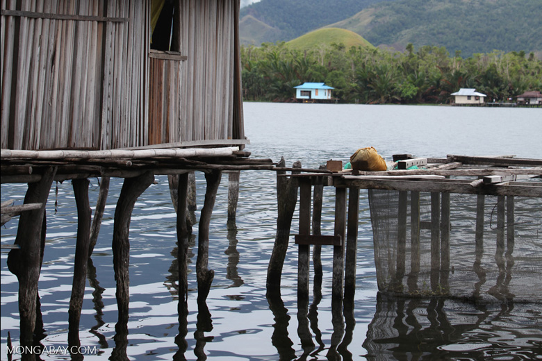 Fish net in Lake Sentani