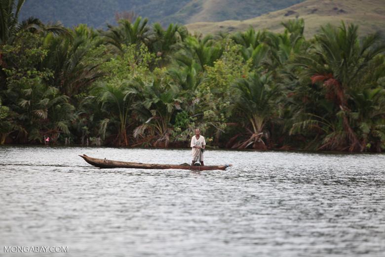 Man fishing on Lake Sentani